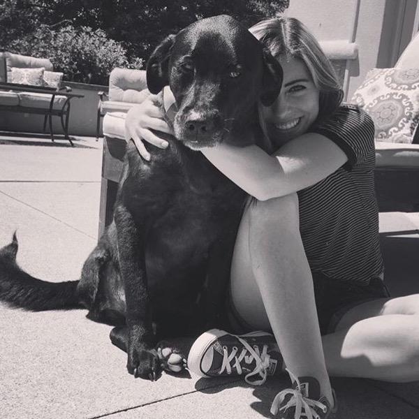 Hayley's dog boarding