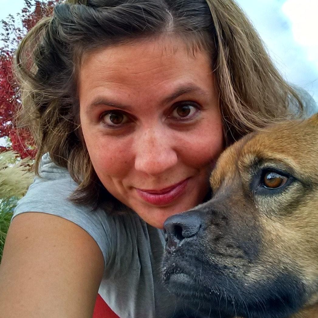 Ginger's dog day care