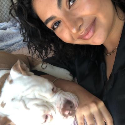 Sandra's dog boarding