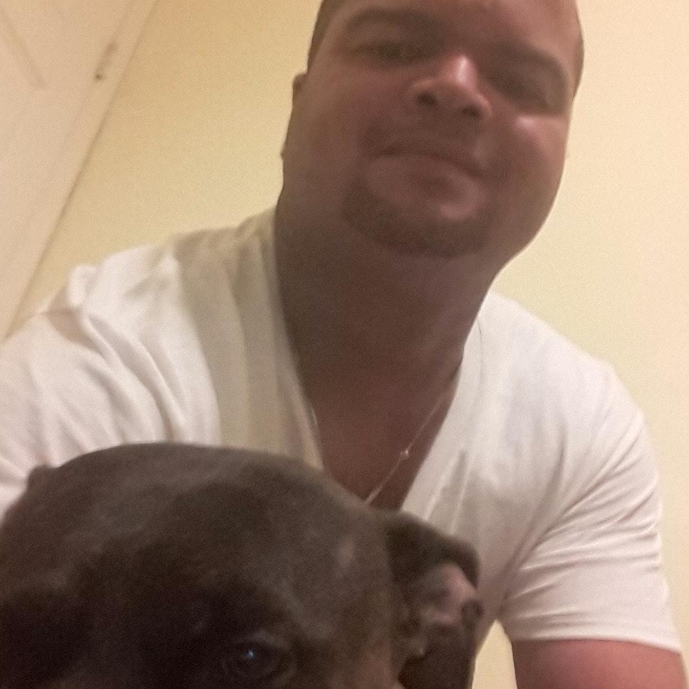 Wilfredo's dog day care