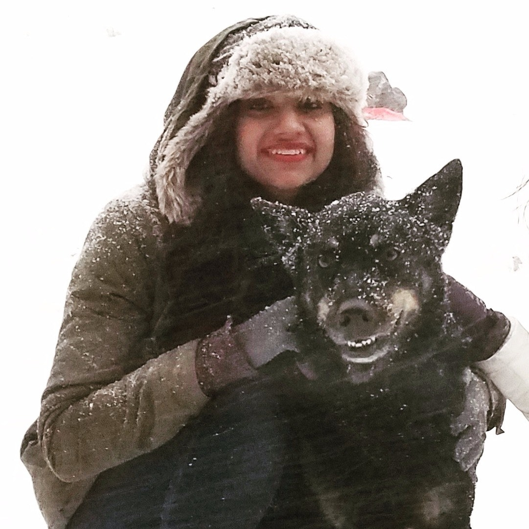 Marium's dog day care