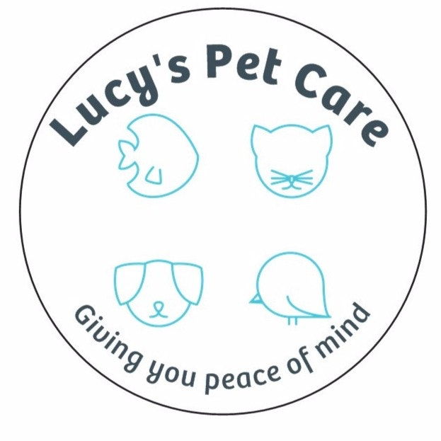 pet sitter Lucy