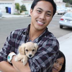 Jayrell's dog day care