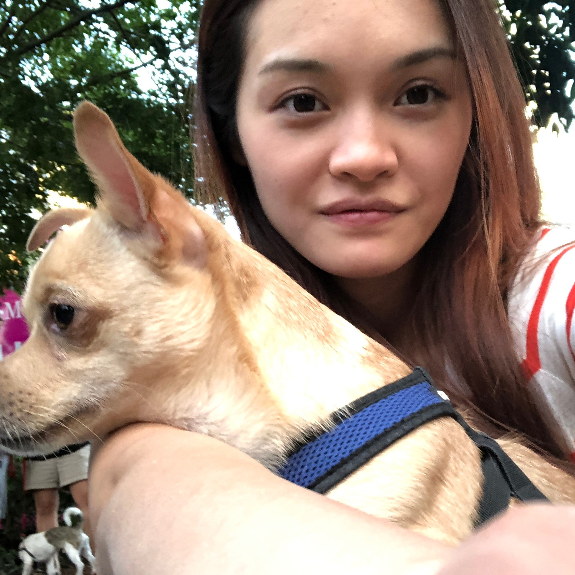 Xinyi & Steven's dog day care