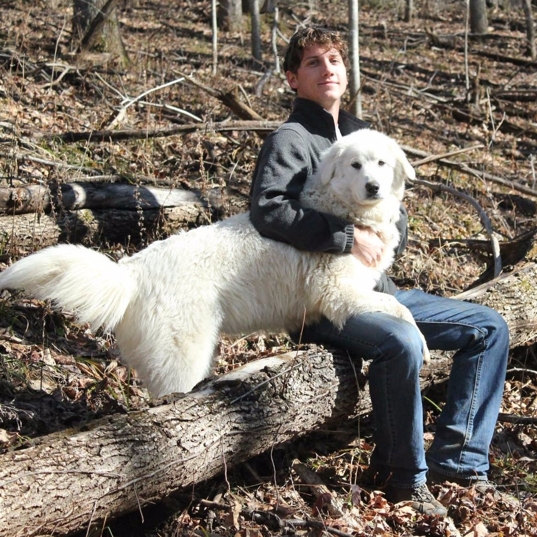 dog walker Zachary