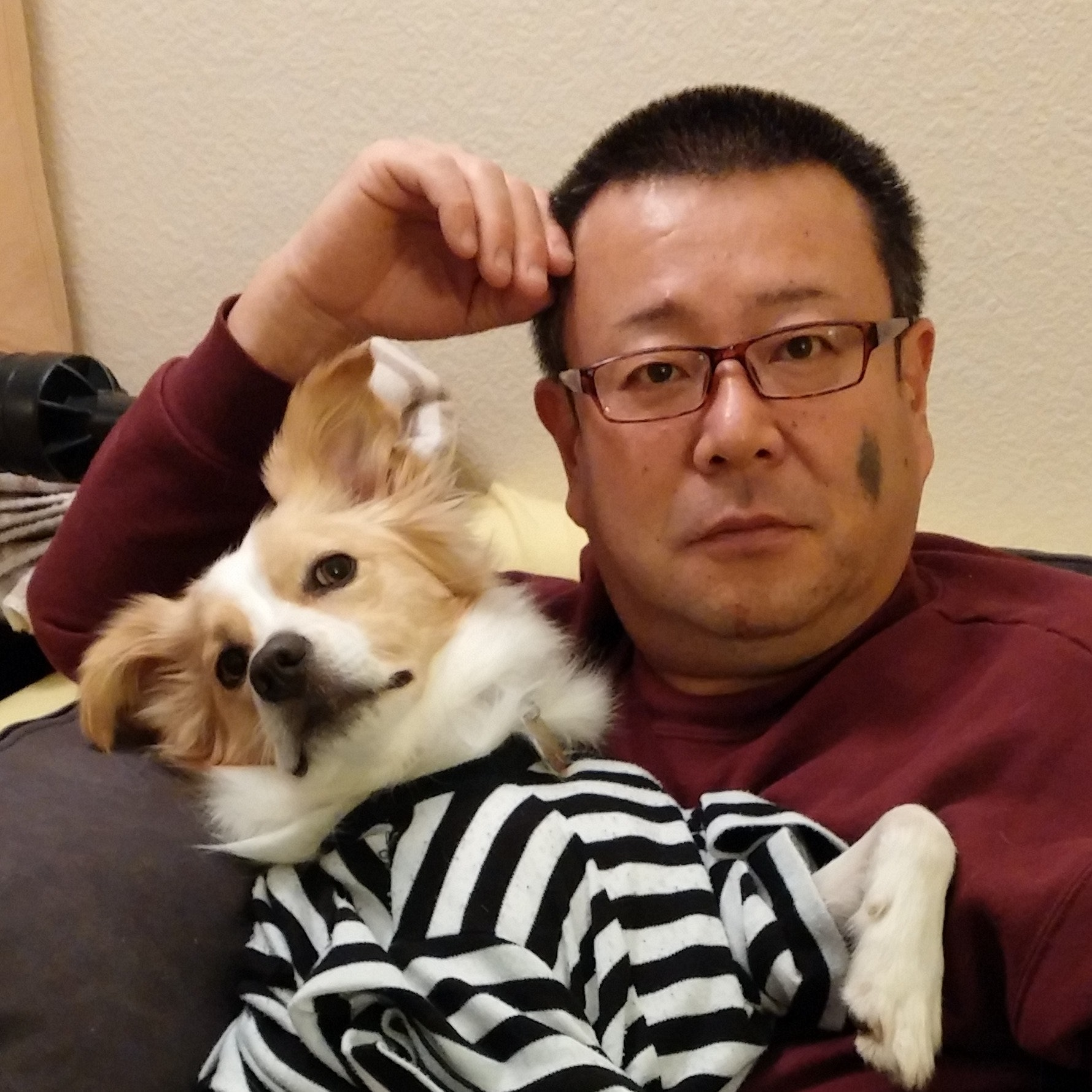 kazu's dog boarding