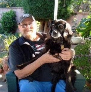 Jack's dog day care