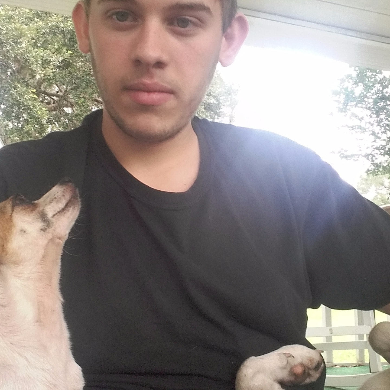 Edmund's dog day care