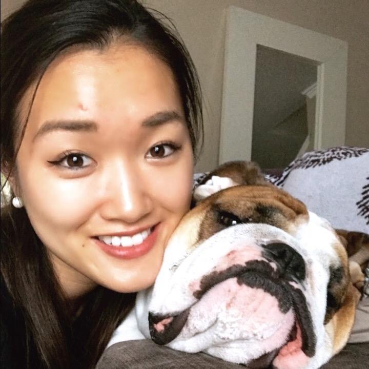 Sona's dog day care