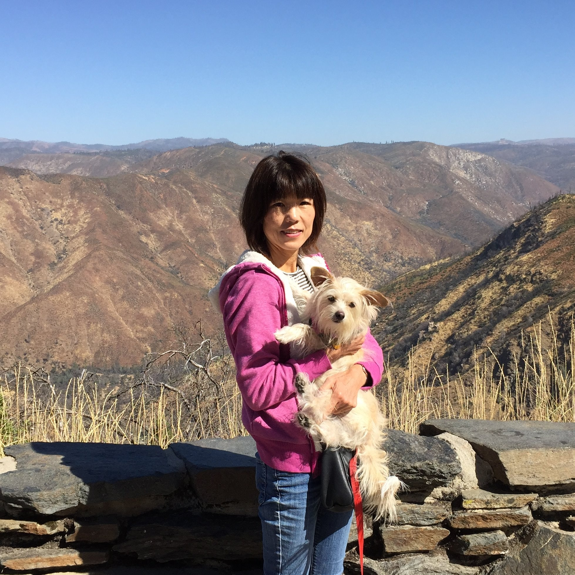 Keiko's dog day care