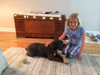Sue's dog day care