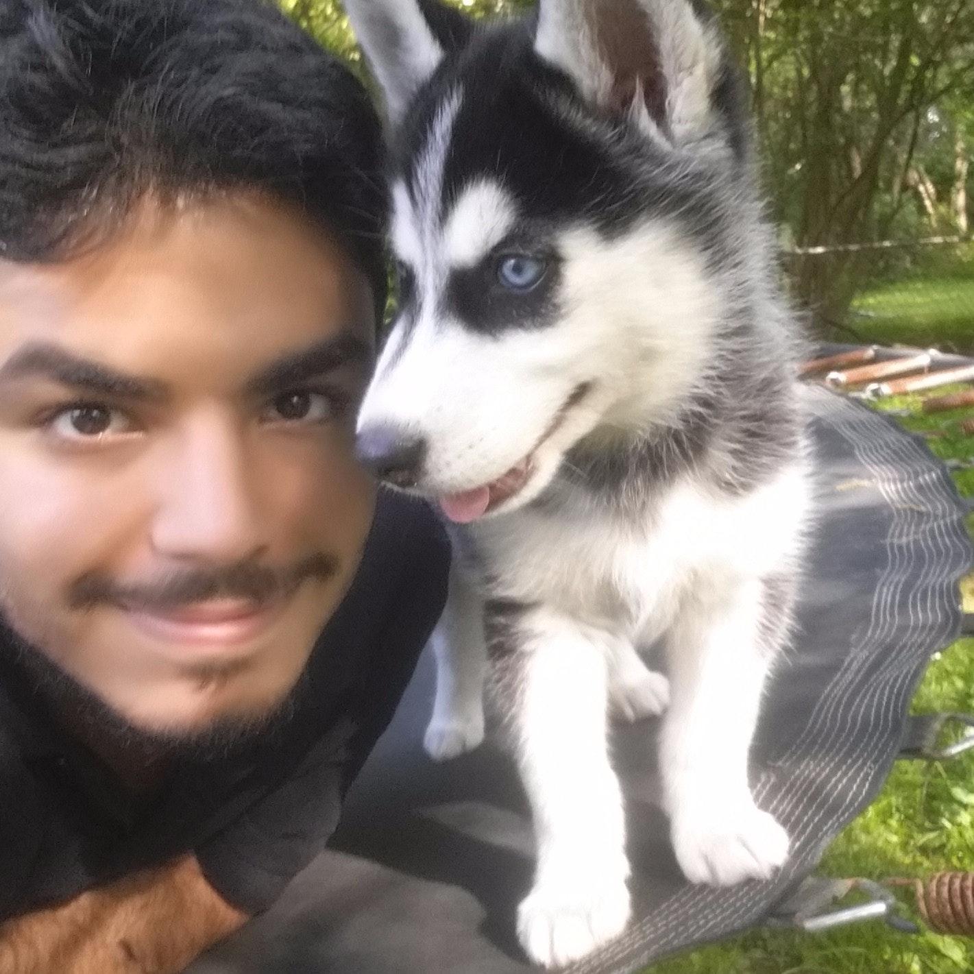 dog walker Mohammed