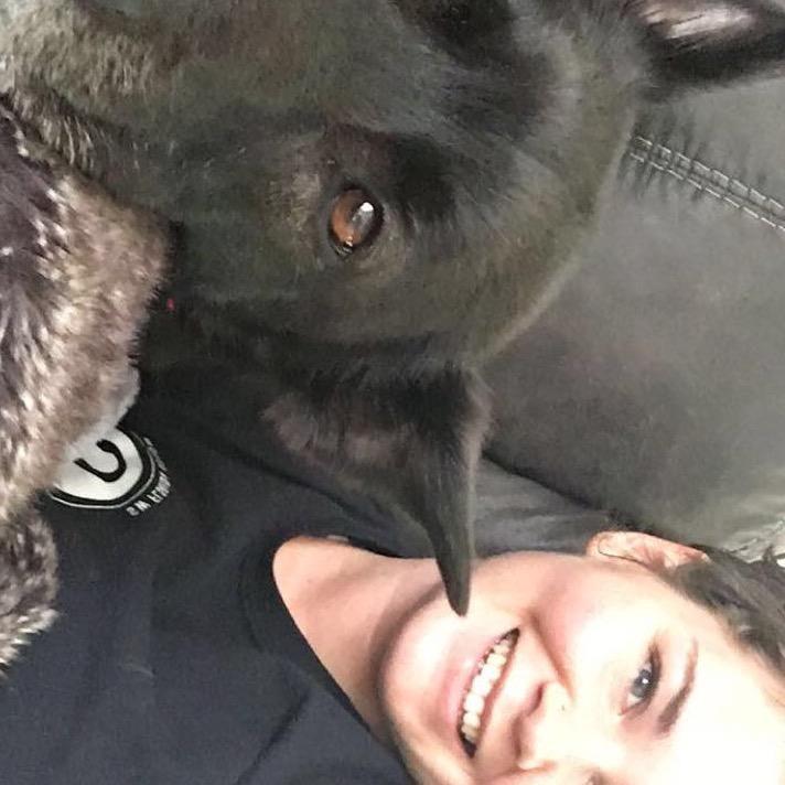 Dallas's dog day care