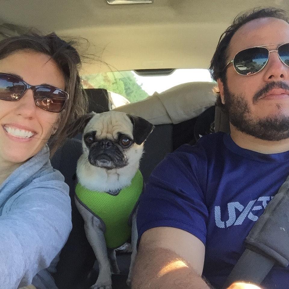 Tony & Kerry's dog boarding