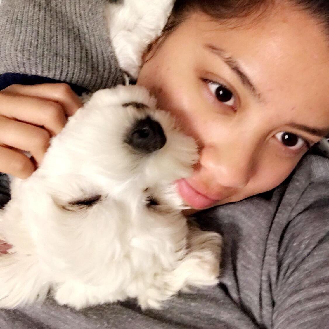 Estefanie's dog day care