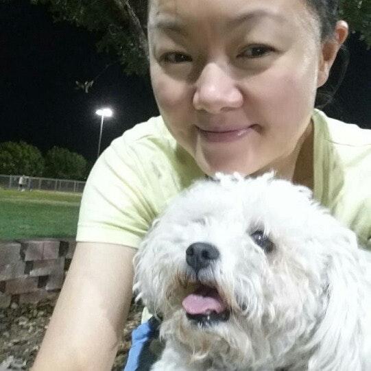 dog walker Judy Kaijun