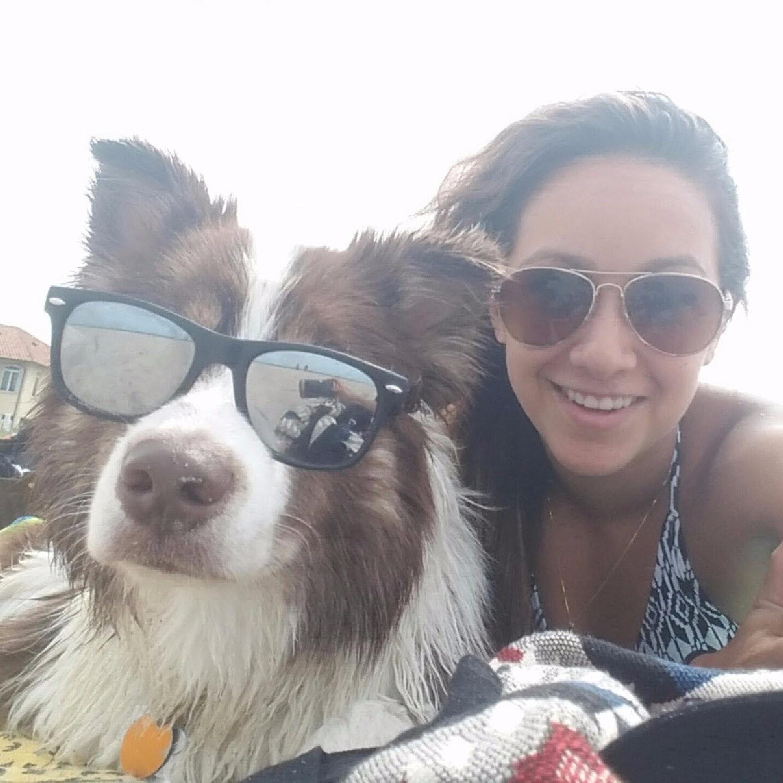 Karolina's dog day care