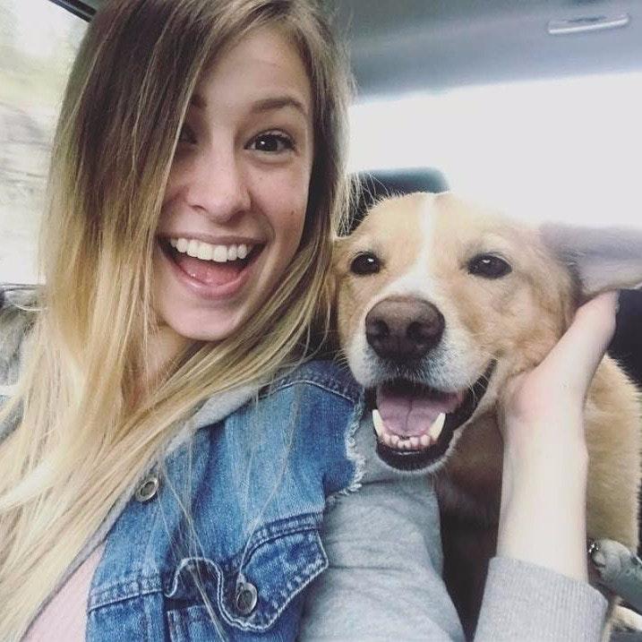 Kelti & Tanner's dog boarding