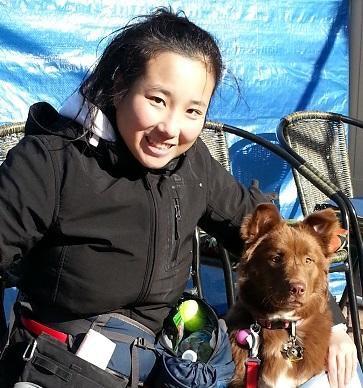 Jennie's dog day care