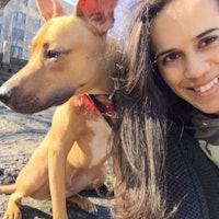 Argentina's dog boarding
