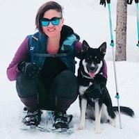 Emmylou's dog boarding