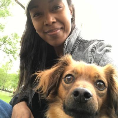 Corrin's dog day care