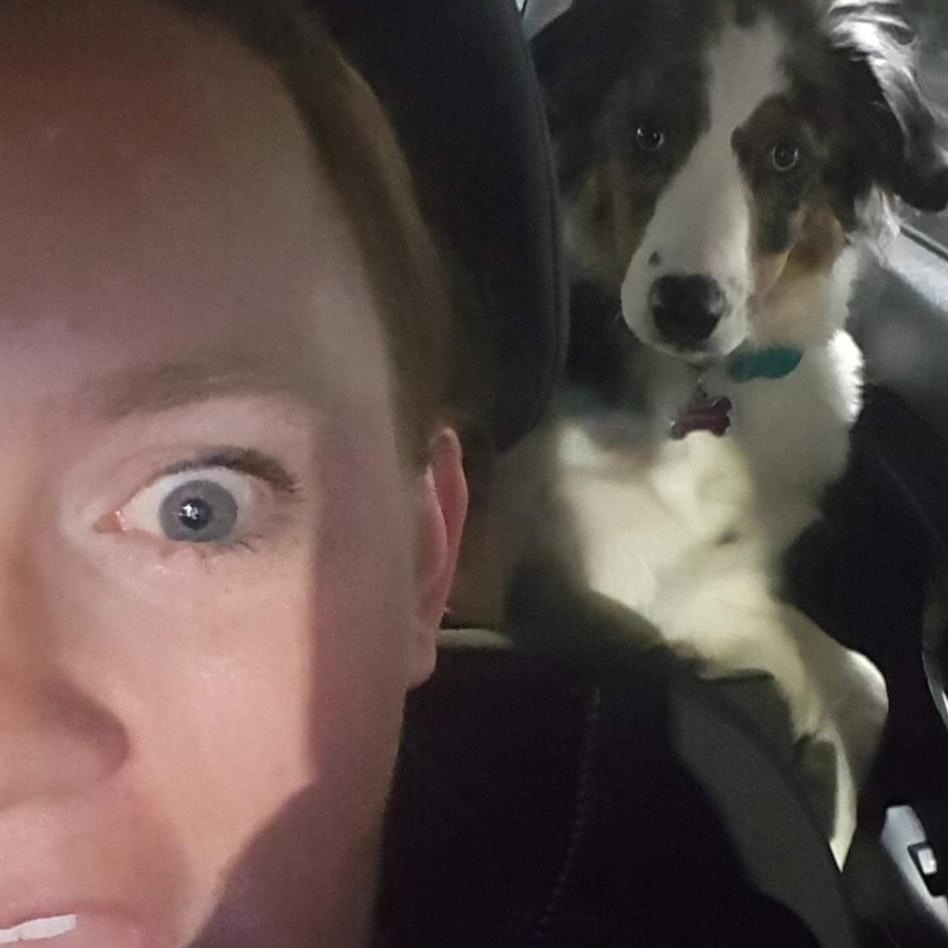 Shayla's dog day care
