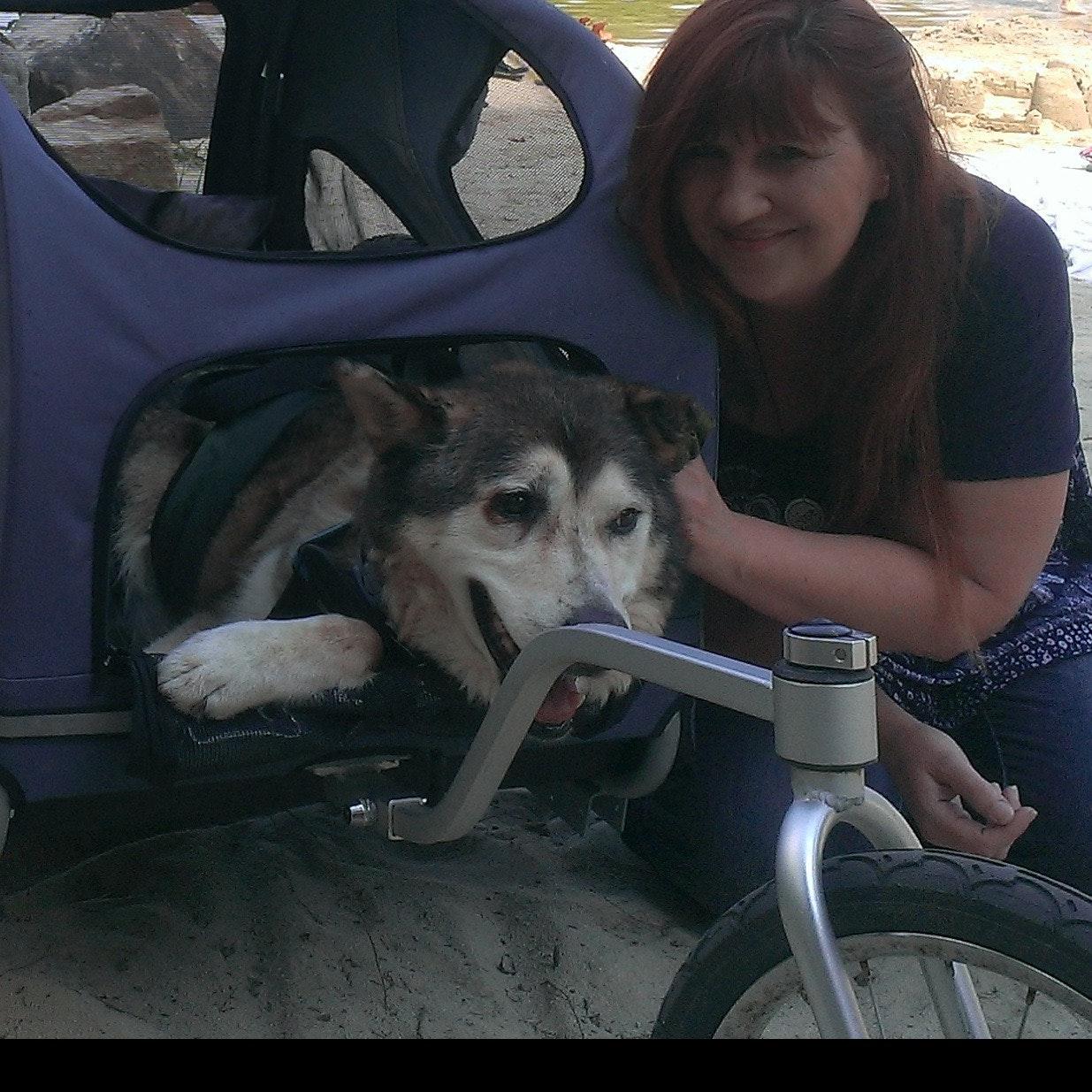 dog walker Victoria