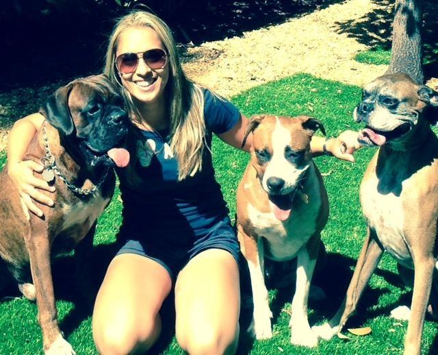Viviane's dog day care