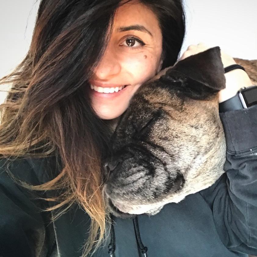 Sandra 's dog day care