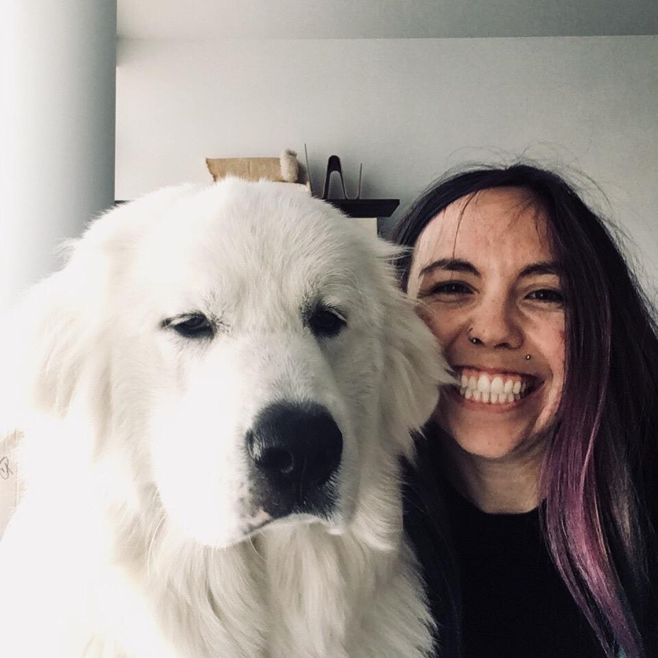 Charlotte's dog boarding