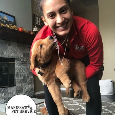 Marissa's dog boarding