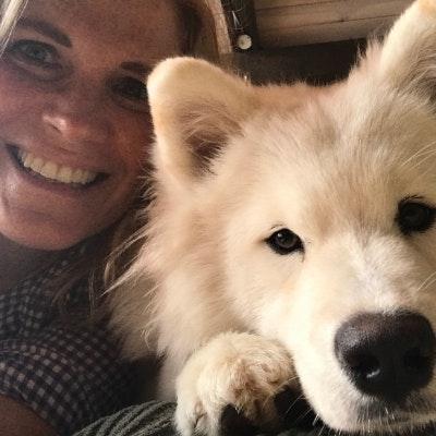 Christy's dog day care