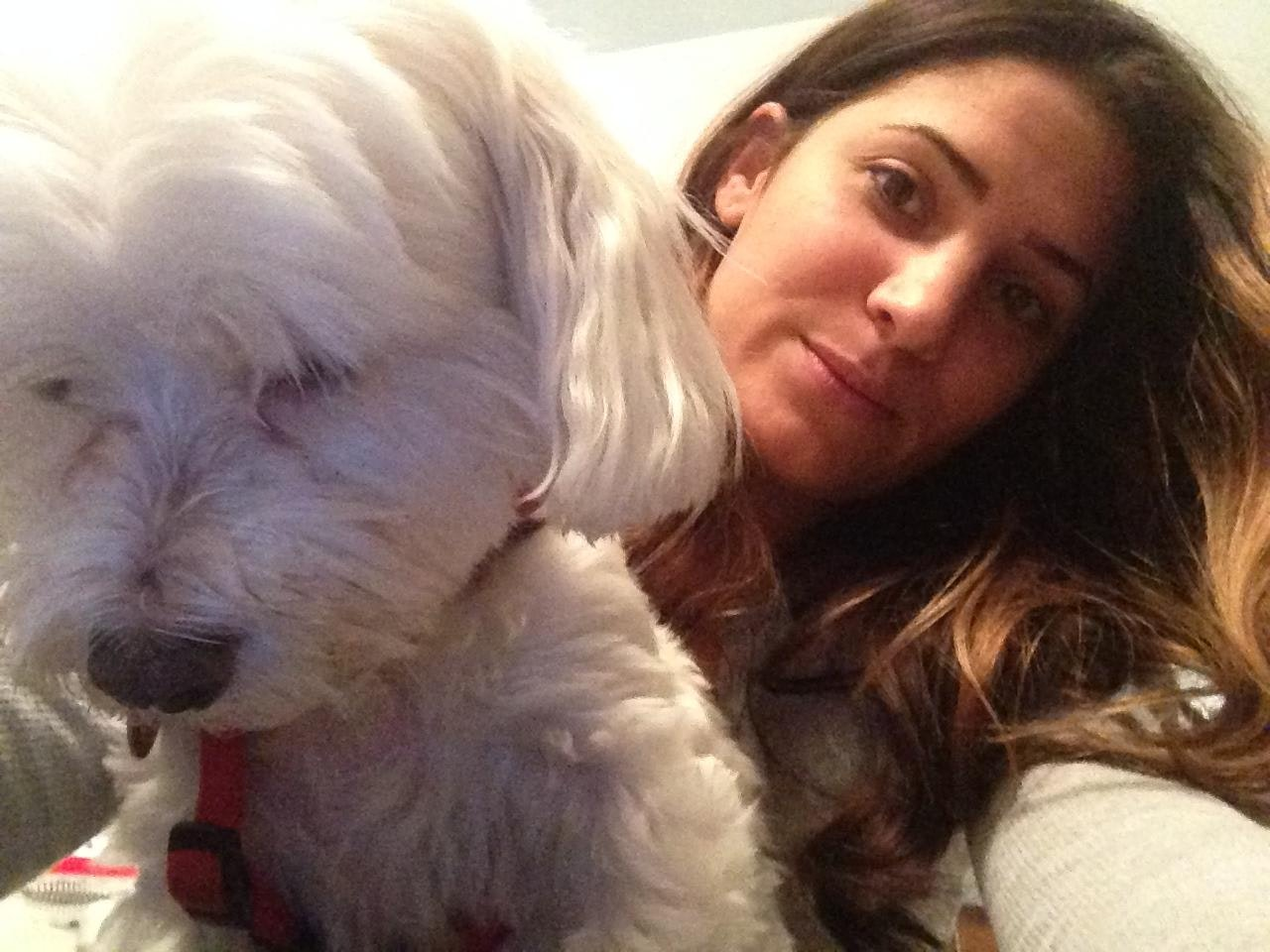 Vicki's dog boarding