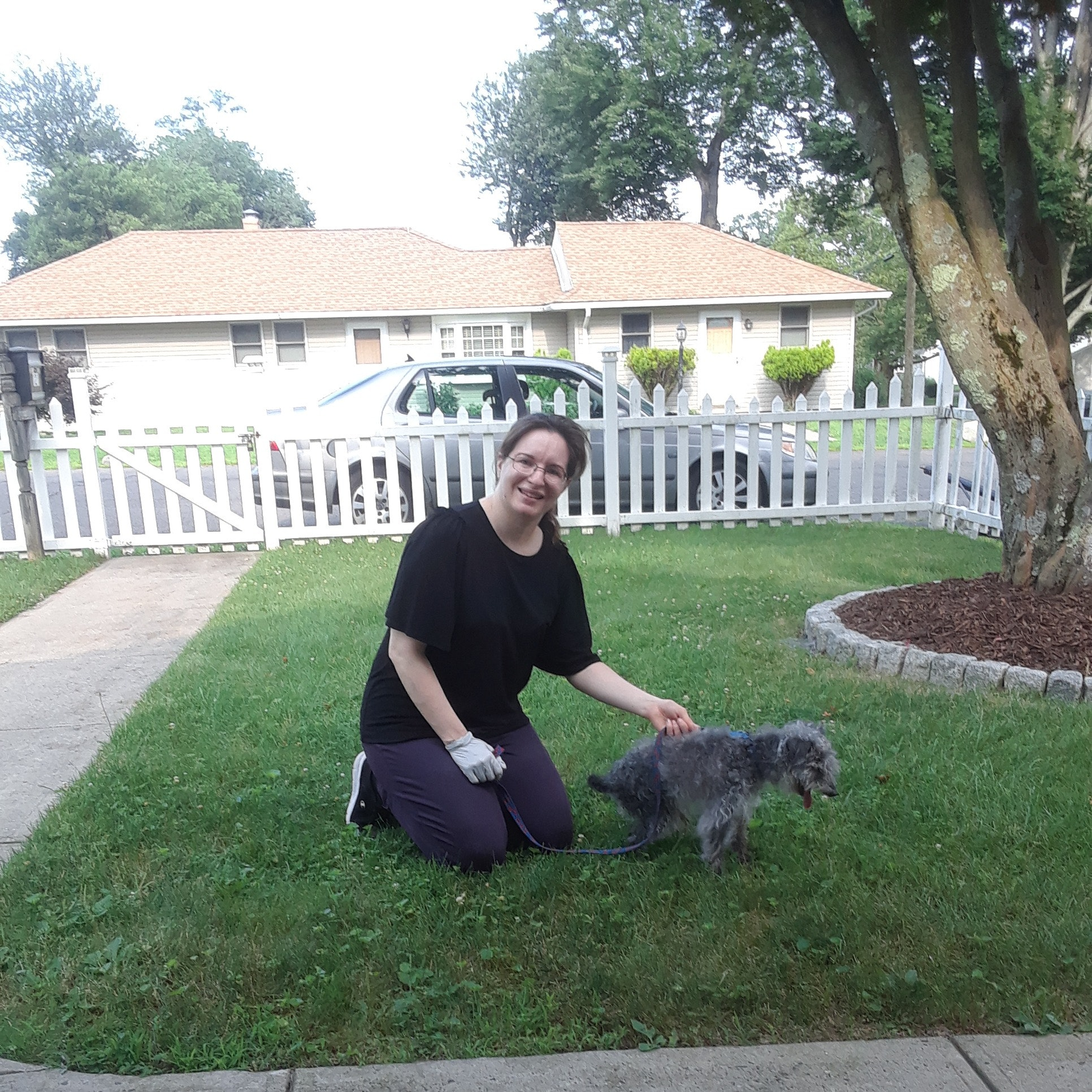 Antonietta's dog boarding