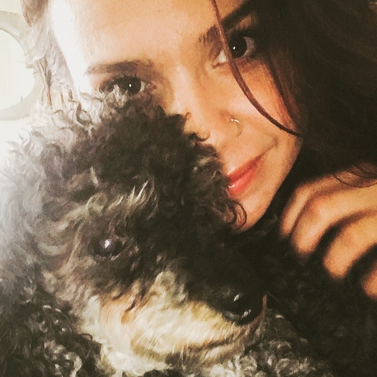 Jasmin's dog boarding