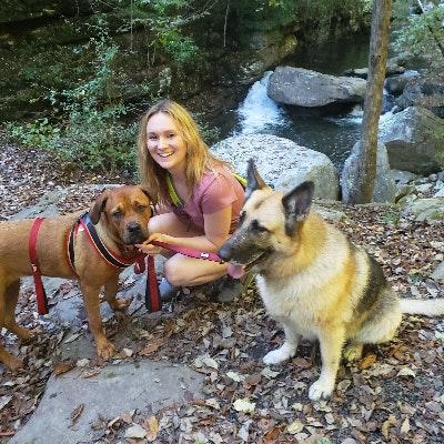 Nazira's dog day care