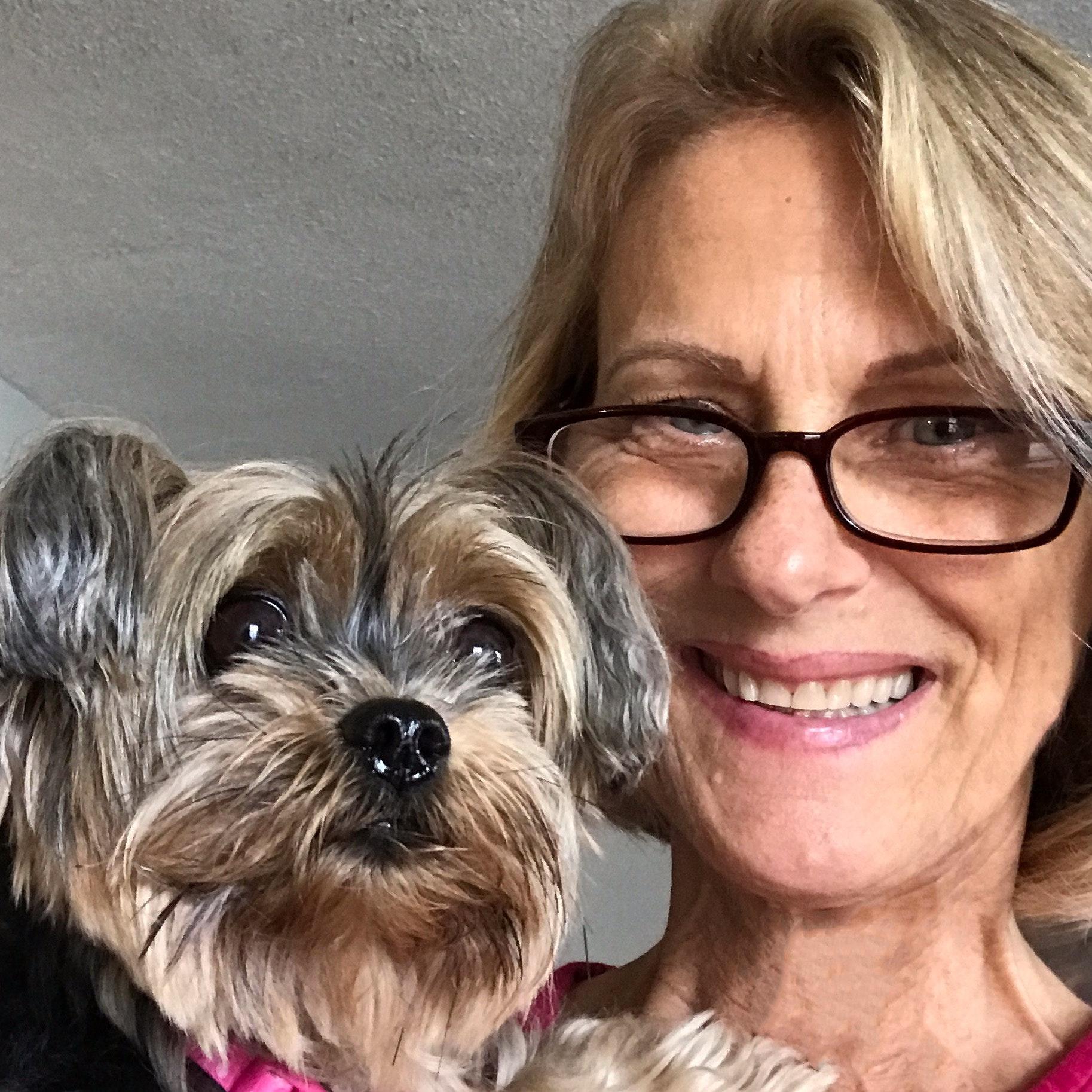Gail's dog boarding