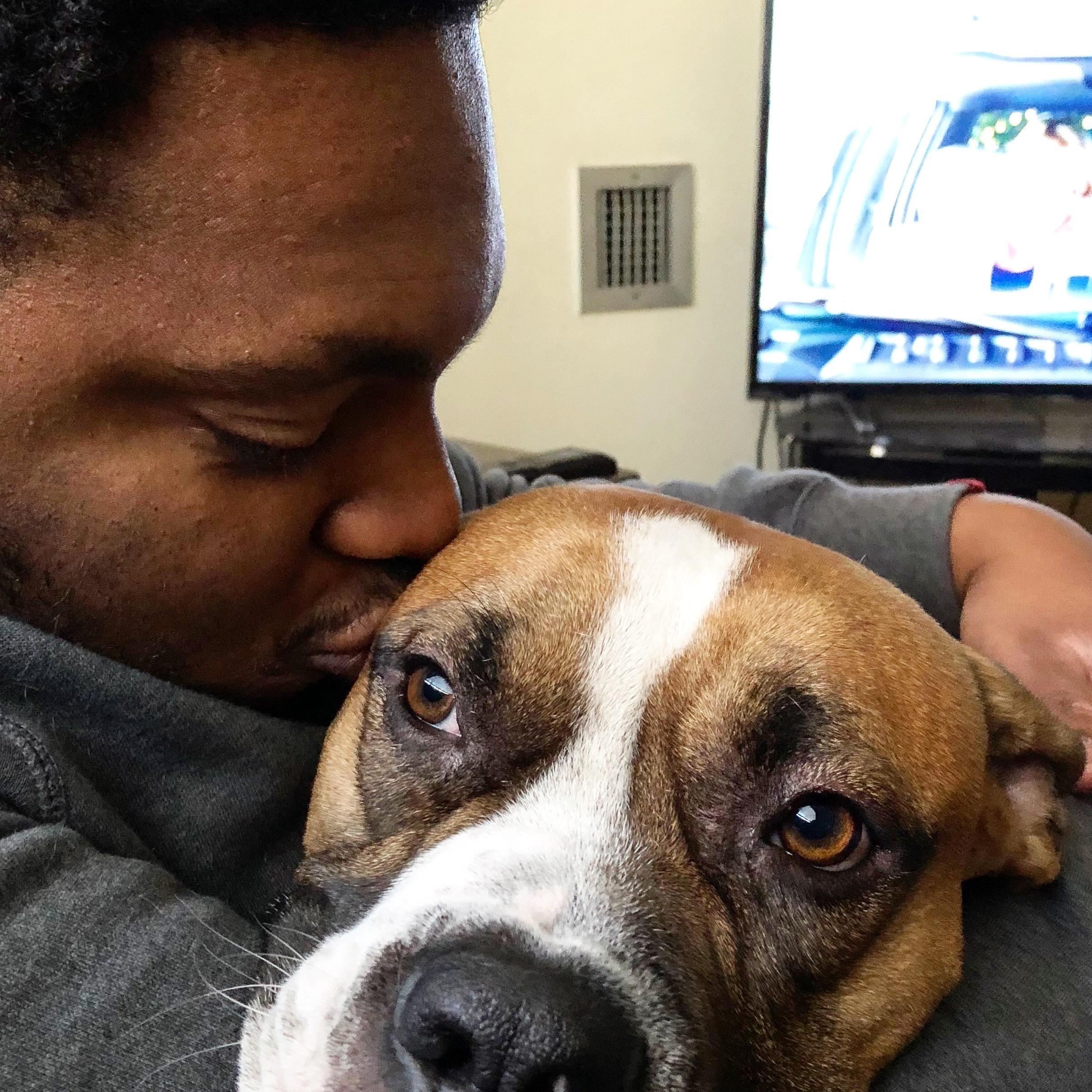Darius's dog day care