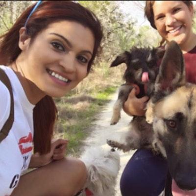 Mayra's dog day care