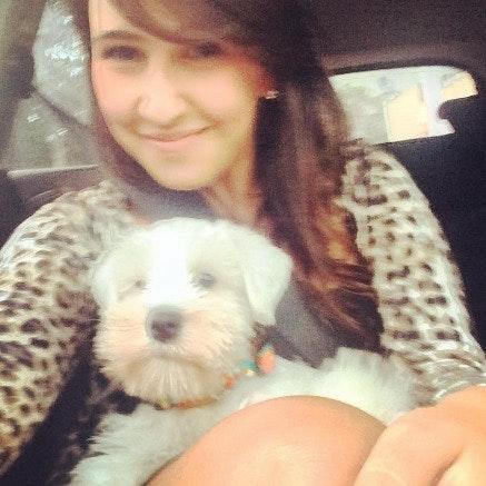 Mariana's dog day care