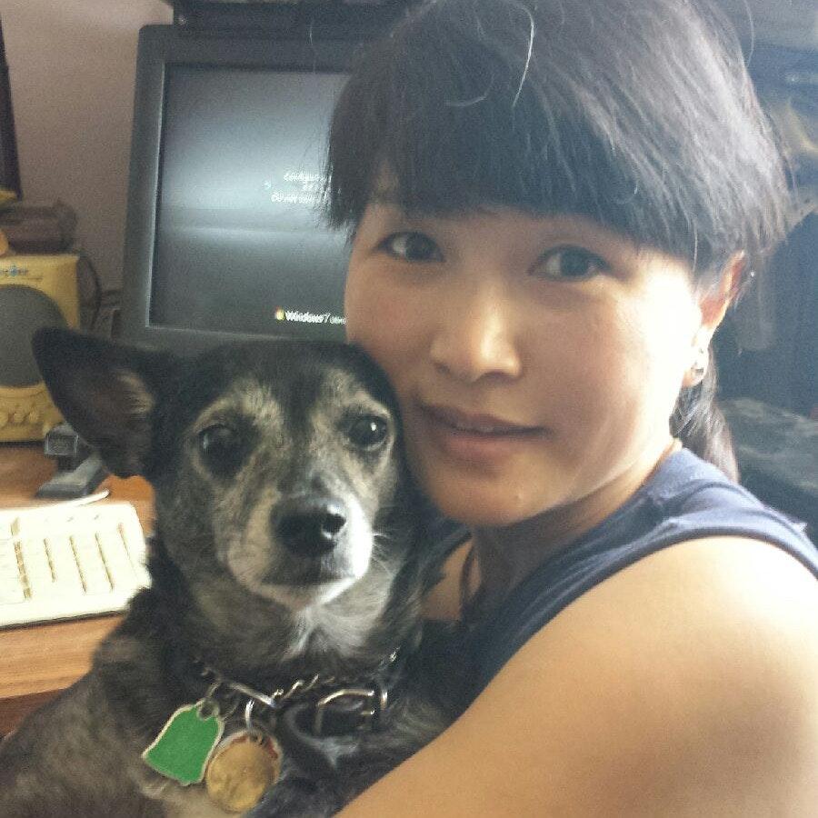Shen's dog day care