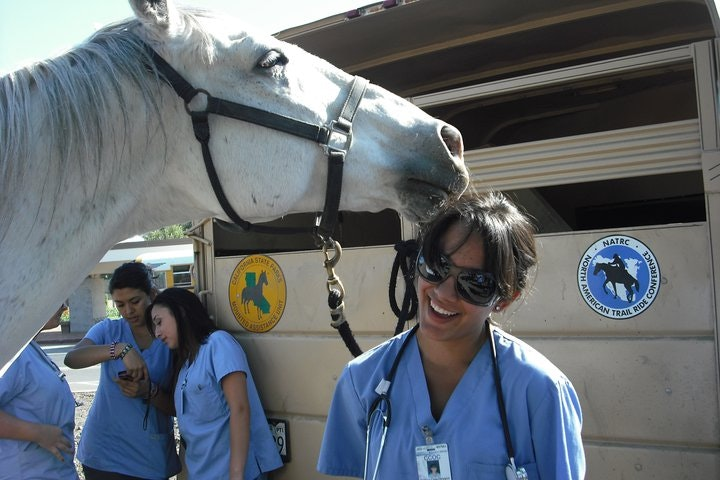 Hello everyone! ▲My name is Jessica. I am a recent Foothill College Vet Tech alumni and am a Registered Veterinary Technician. If that mouthful sounds a bit confusing, I am that handy-dandy nursing staff member that your Fluffy or Lucky gets to spend time with whenever they go to the vet! ▲I...