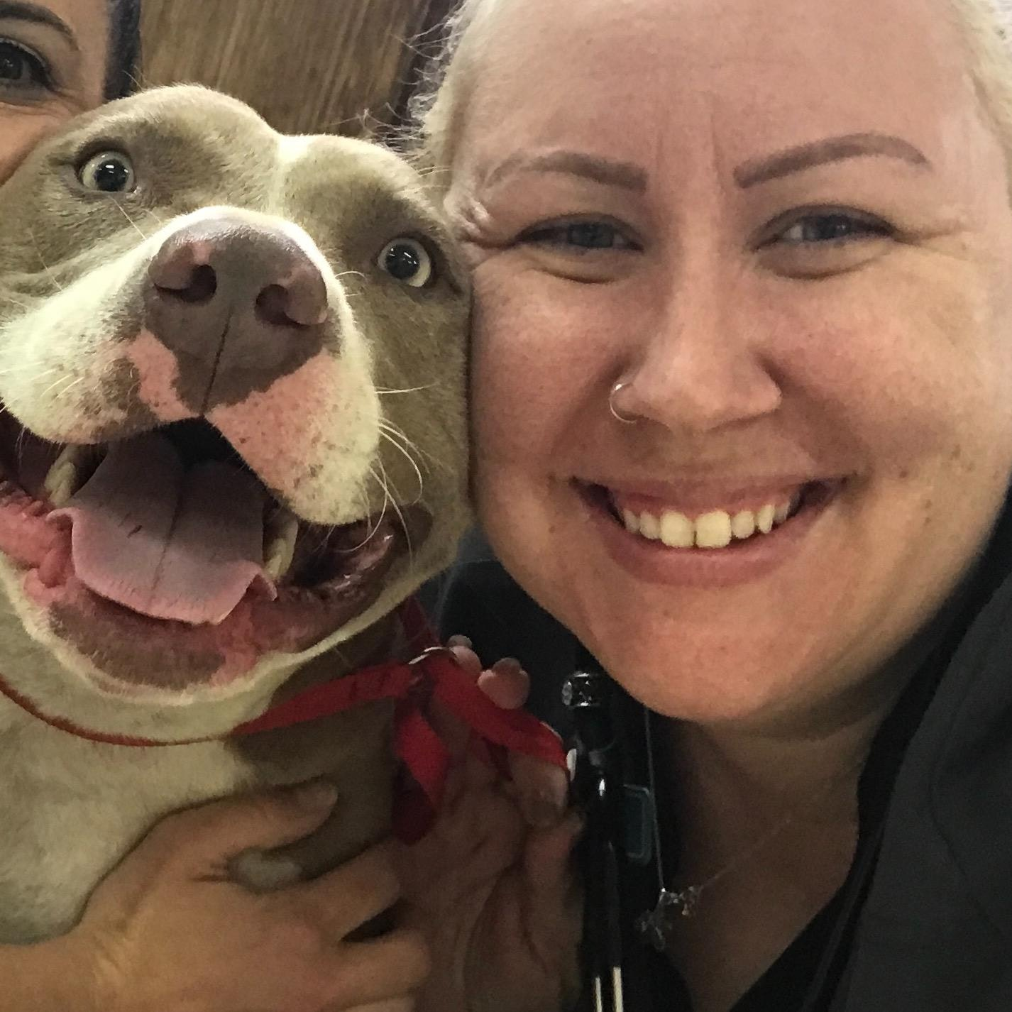 Britni's dog day care