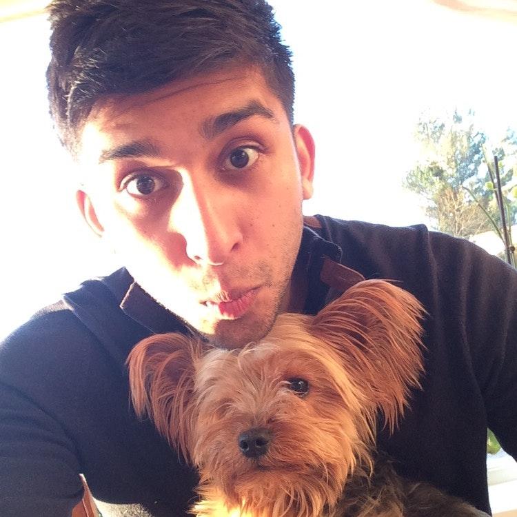 Kunal's dog day care