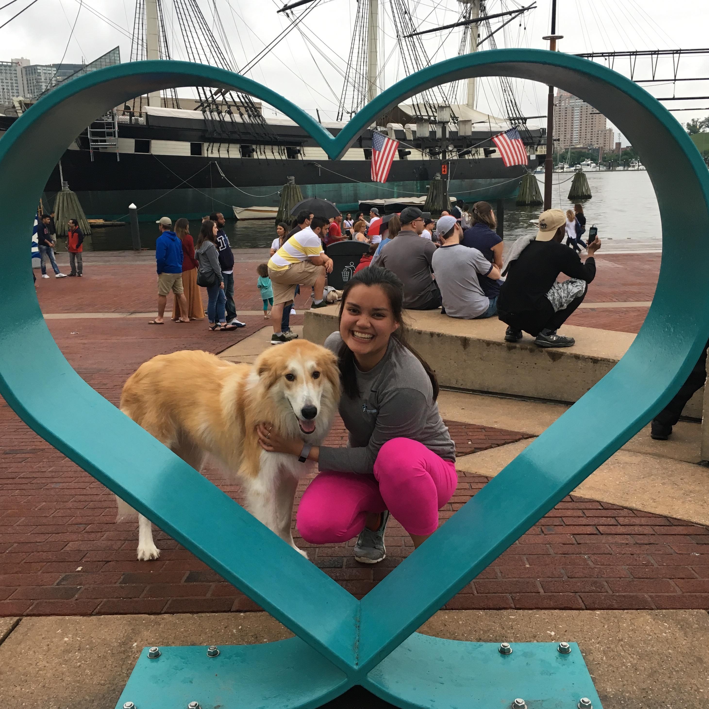 Victoria & Emma's dog boarding