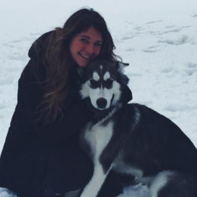 Taylor's dog boarding