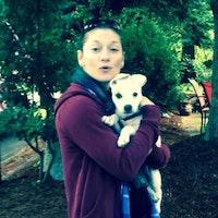 Lori's dog boarding