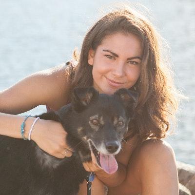 Kyra's dog boarding