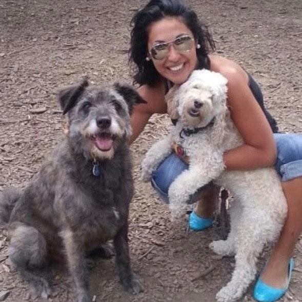 Talicia's dog day care